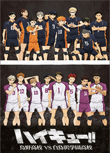 [DVD] ハイキュー!! 烏野高校 VS 白鳥沢学園高校【完全版】(初回生産限定版)